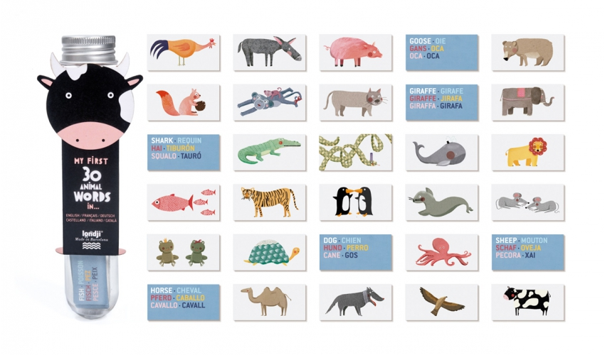 Micro animal dictionary
